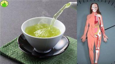 Что происходит с телом, когда вы потребляете зеленый чай