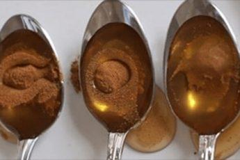 Мед и корица: недооцененная польза для здоровья
