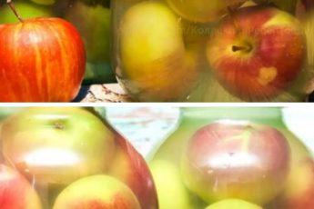 Моченые яблоки — самый простой и вкусный рецепт заготовки на зиму