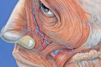 16 упражнений китайской медицины для здоровья глаз 1